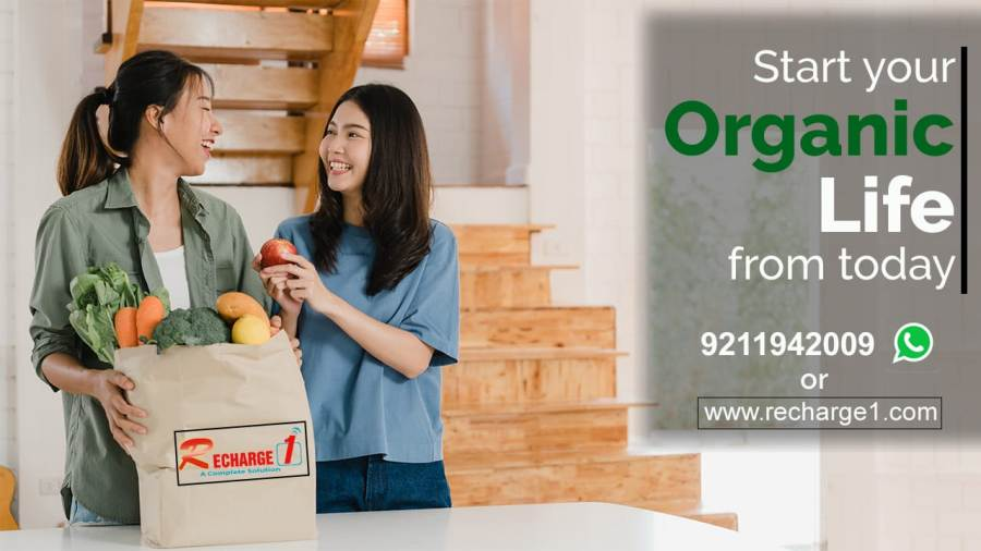 Best Organic Fruits